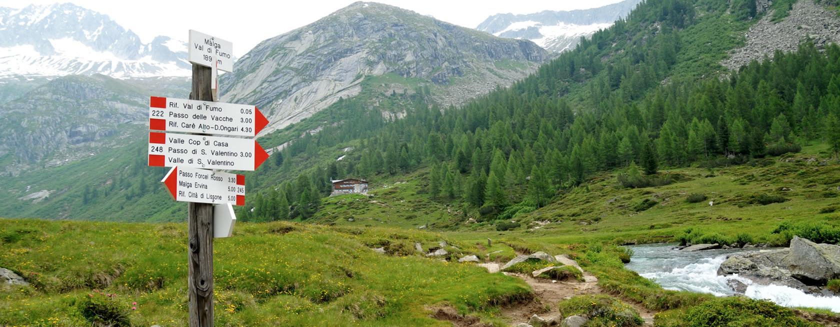 Sentieri trekking in Valle di Daone